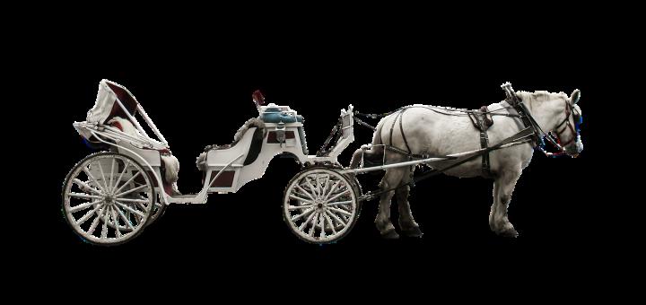 Pferdekutsche_Taxi-HD